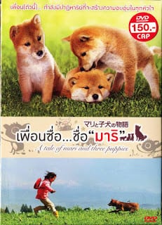 A Tale of Mari and Three Puppies (2007) เพื่อนซื่อ ชื่อ มาริ