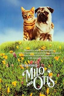 The Adventures of Milo and Otis (1986) แมวจ๋าหมาอยู่นี่