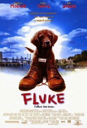 Fluke (1995) เกิดใหม่กลายเป็นหมา