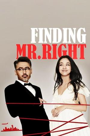 Finding Mr. Right (2013) ข้ามฟ้ามาเติมรัก