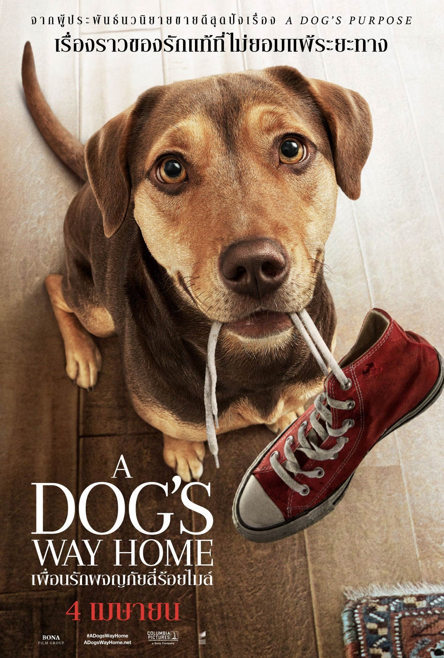 A Dog s Way Home (2019) เพื่อนรักผจญภัยสี่ร้อยไมล์