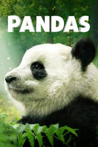 Pandas (2018) แพนด้ายักษ์