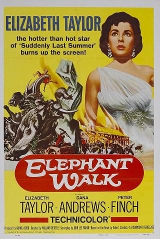 Elephant Walk (1953) บรรยายไทย