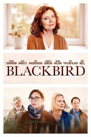 Blackbird (2019) บรรยายไทย