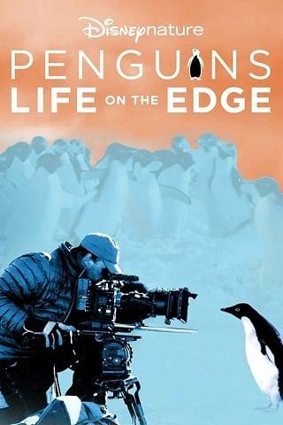 Penguins Life on the Edge (2020) Disney+ Hotstar บรรยายไทย