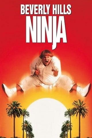 Beverly Hills Ninja (1997) ตุ้ยนุ้ยนินจาฮากลิ้ง