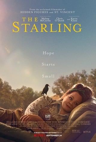 The Starling | Netflix (2021) เดอะ สตาร์ลิง