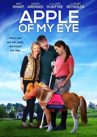 Apple of My Eye (2017) บรรยายไทย