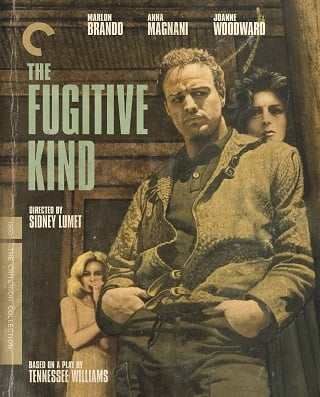 The Fugitive Kind (1960) บรรยายไทย
